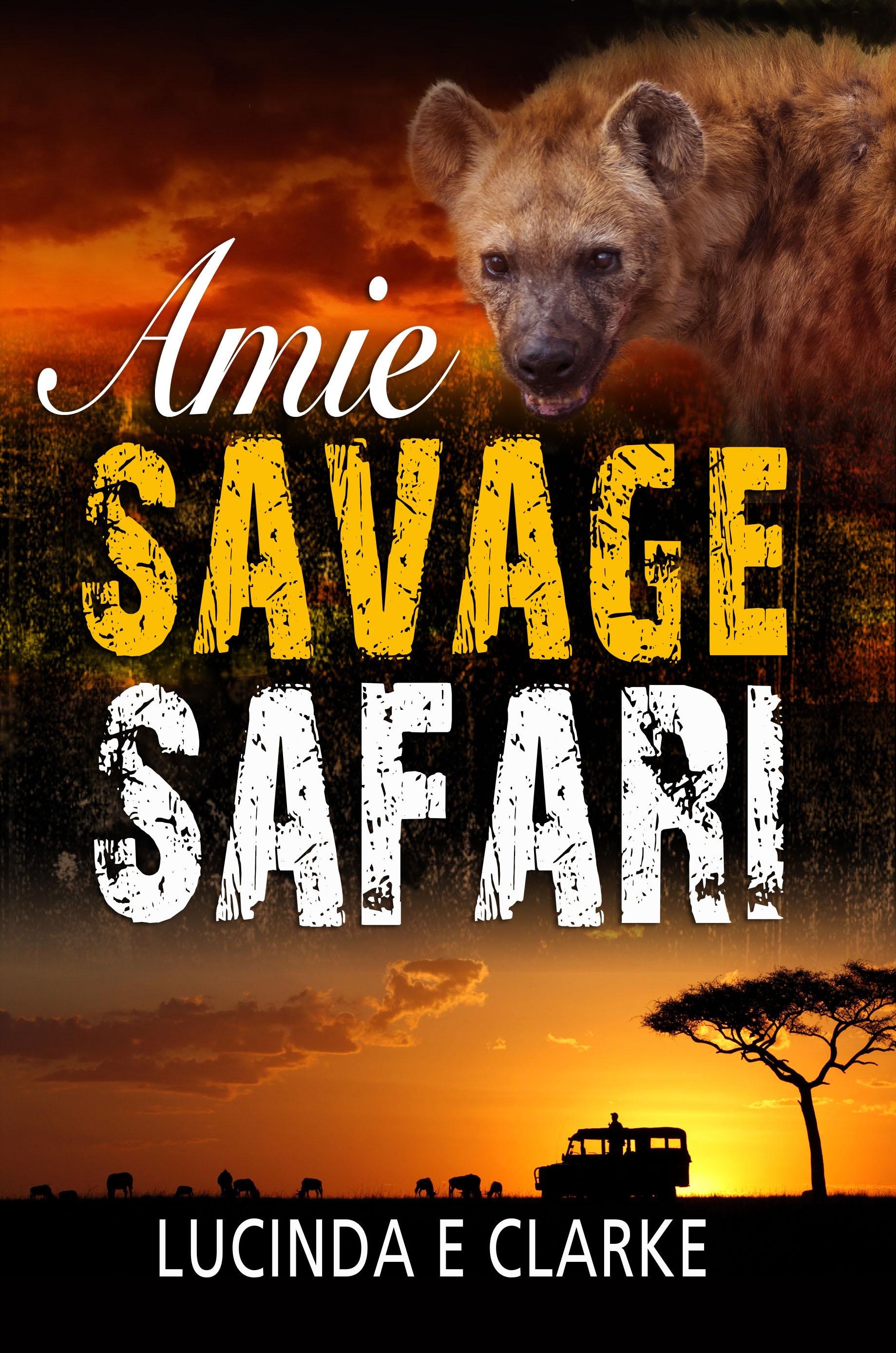 Amie 5 Front cover v3 small